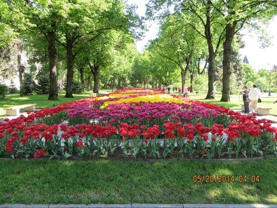 Moskauer Kreml: Flowering garden within the Kremlin