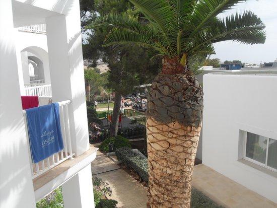 Insotel Tarida Beach Sensatori Resort : View from balcony
