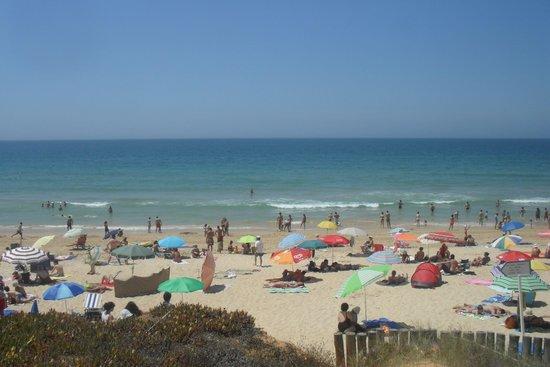 Algarve Gardens: the beach