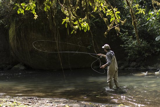 Trogon Lodge San Gerardo de Dota: Fishing Rio Savegre