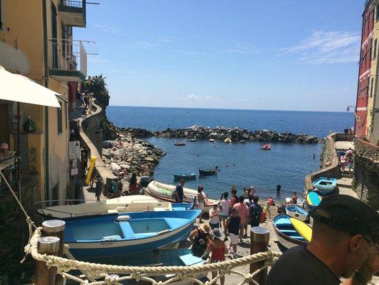 Alla Marina : Riomaggiore harbor