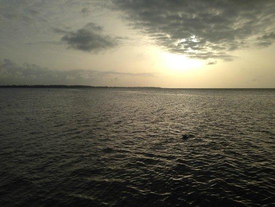 Gran Melia Golf Resort Puerto Rico: Sunset