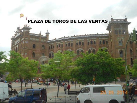 Plaza de Toros las Ventas: Plazxa de toros de las ventas