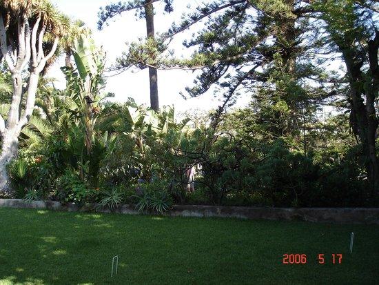 Orchid garden puerto de la cruz tenerife video of jardin for Jardines de orquideas