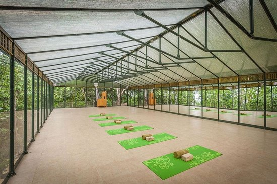 Xinalani Retreat : Greenhouse Yoga Studio