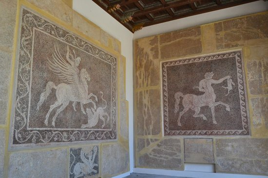 Archaeological Museum of Rhodes (Hospital of the Knights): Мозаичные панно