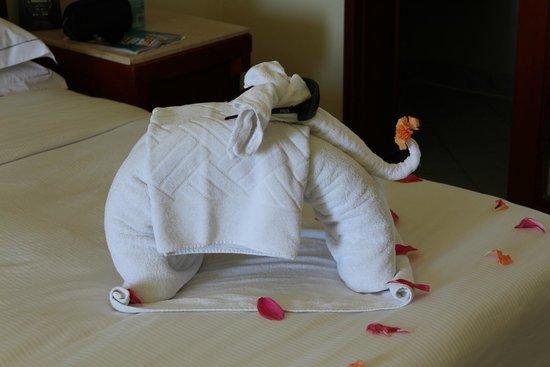 Hilton Sharm Waterfalls Resort: слоник))