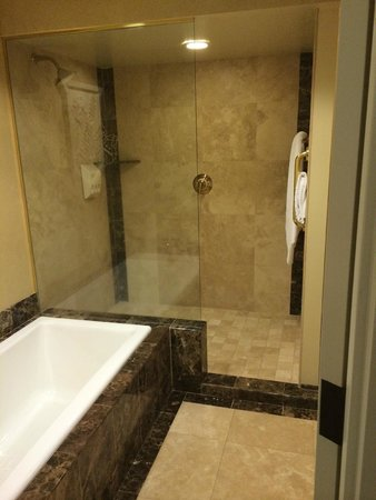The Historic Davenport, Autograph Collection: Huge shower