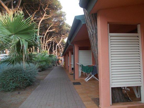 Argentario Camping Village: Bungalow monolocali
