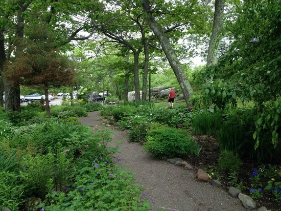 Enger Park and Tower: Great Gardens
