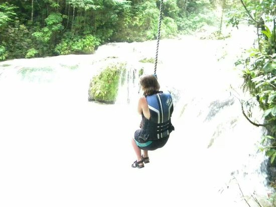 YS Falls: Elizabeth on the tree rope
