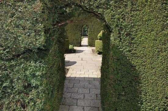 Hidcote Manor Garden: Through the trees