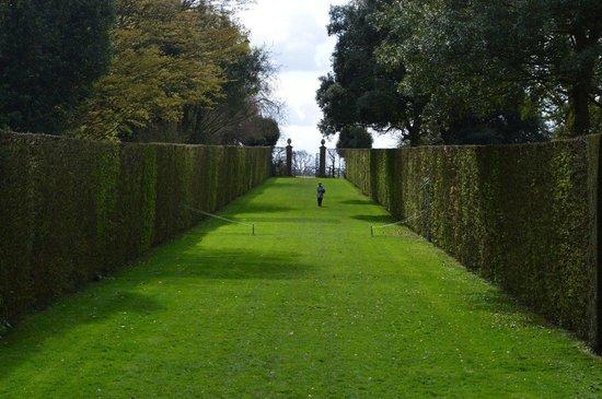 Hidcote Manor Garden: A long walk
