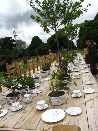 Royal Botanic Gardens Kew: A beautiful table with many plants