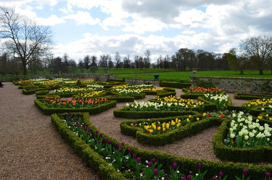 Charlecote Park: Flowers with a view