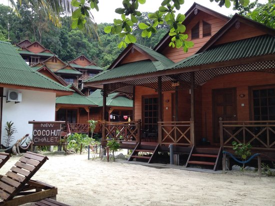 New Cocohut & Cozy Chalets: The compound
