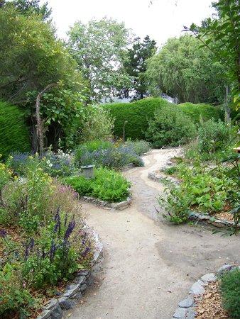Cambria Pines Lodge : Garden path