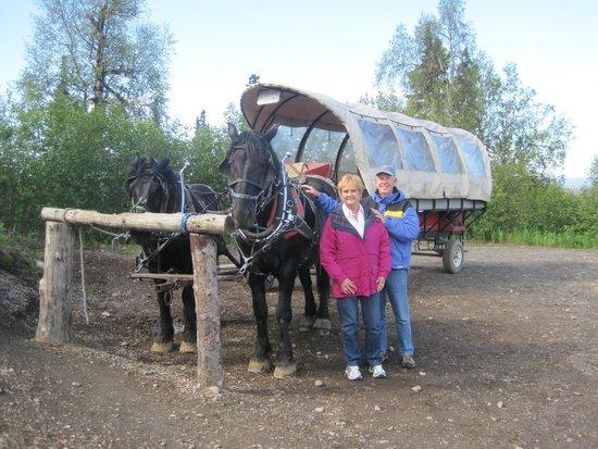 Mt. McKinley Princess Wilderness Lodge: Horse-Drawn Wagon Ride