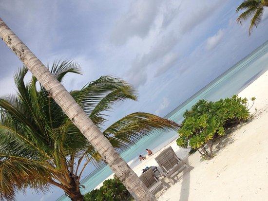 Fun Island Resort : И пусть весь мир подождет!