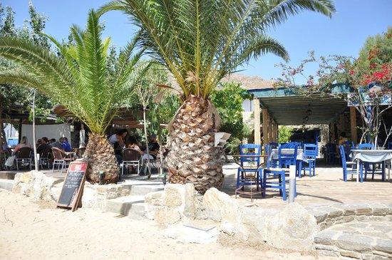 Alexandros-Vassilia : Taverna & Cafe