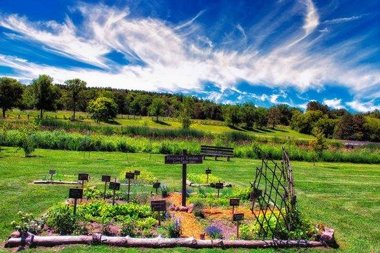 Scandia, MN : Immigrant Garden  - photo: R. Guernsey