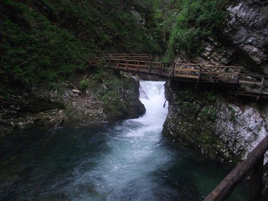 Vintgar Gorge (Soteska Vintgar): Vintgar Gorge
