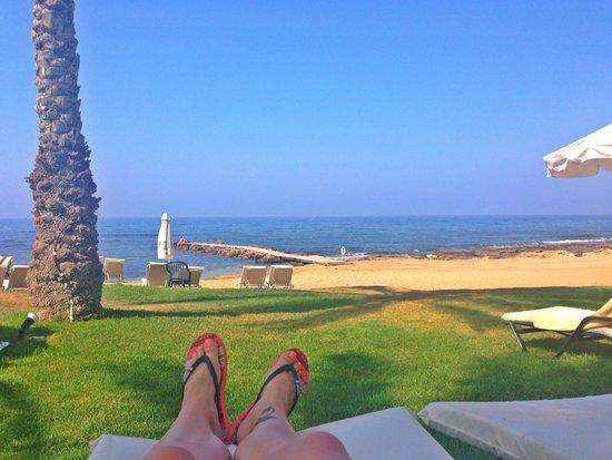 Constantinou Bros Athena Beach Hotel: Lush view