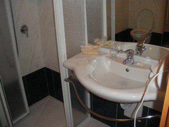 Hotel Bellamonte: bagno