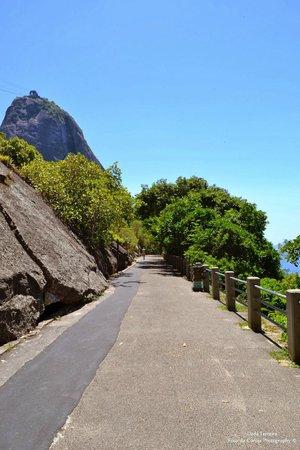 Claudio Coutinho Trail: Inicio