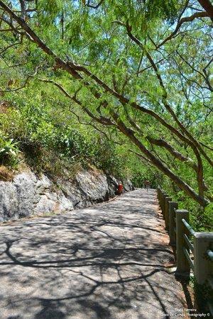 Claudio Coutinho Trail: Meio