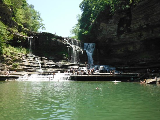 Cummins Falls State Park: Swimming hole