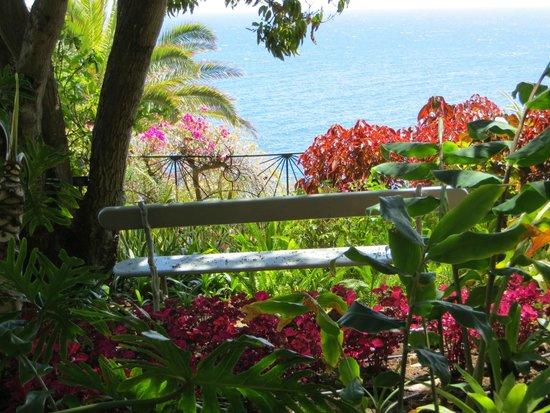 Belmond Reid's Palace: Blick vom Hotelgarten