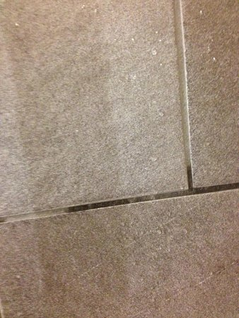 Hard Rock Hotel Palm Springs: Mold in grout