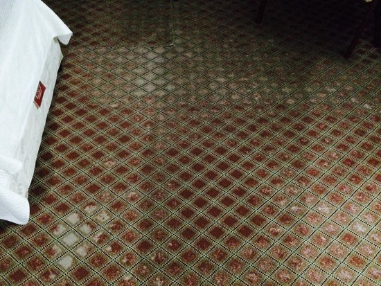 Musti's Royal Plaza: Outdated carpet