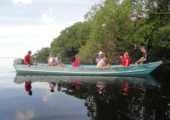 Amazon Brasil Jungle Tours - Day Tours: Exploring the Anavilhanas archipelago, directly across from the lodge.