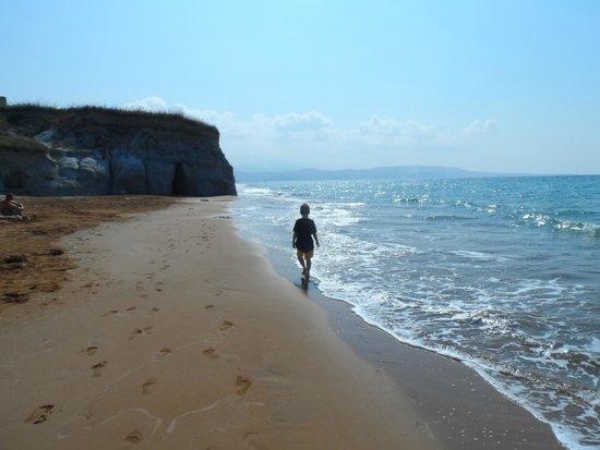 Cephalonia Palace Hotel: xi beach