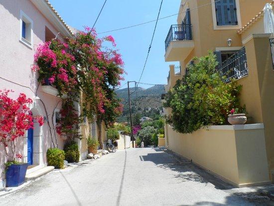 Cephalonia Palace Hotel: Assos