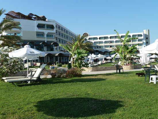 Constantinou Bros Athena Royal Beach Hotel: Athena Royal Beach Gardens