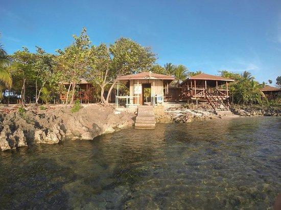 Anthony's Key Resort: Shore Dive