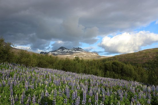 Akranes, Islandia: Beautiful mountain vista on climb to Glymur
