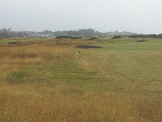 Portmarnock Golf Club: Picture of the course