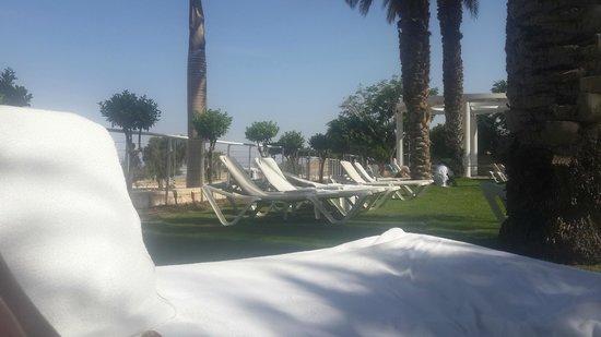 Isrotel Dead Sea Hotel & Spa : басс