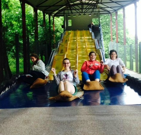 Westport House & Pirate Adventure Park : The slippery dip is always a blast