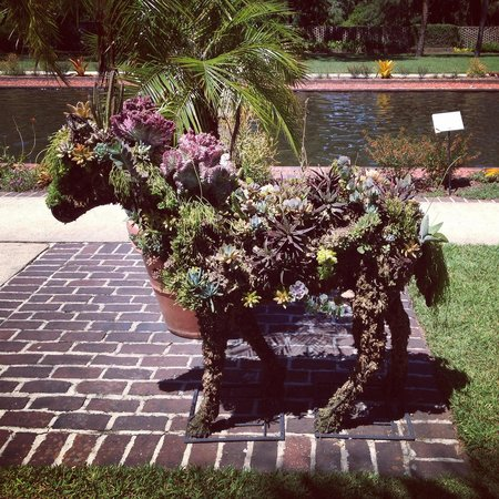 Brookgreen Gardens: My favorite thing! A horse made from succulents!