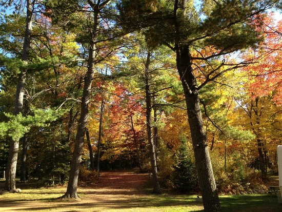 Hi-Pines Campground : Beautiful Setting