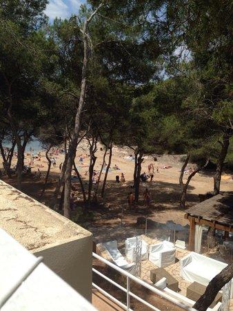 IBEROSTAR Club Cala Barca: Hotel beach
