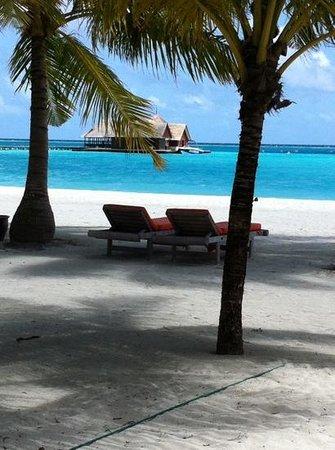 Club Med Kani : de quoi vous mettre l'eau à la bouche