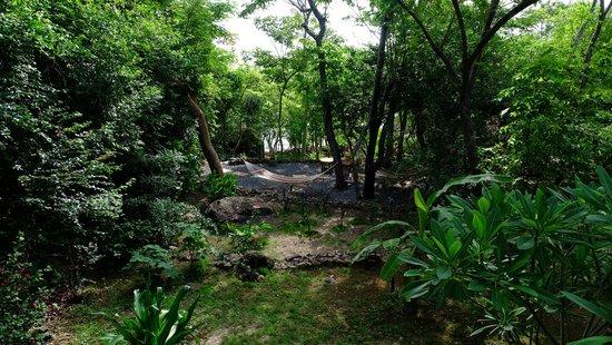 San Simian Eco Lodge: Hammocks everywhere