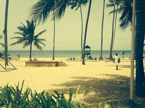Dreams Punta Cana Resort & Spa: Paradise