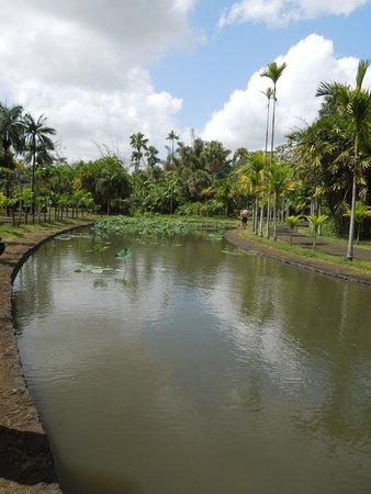 Shandrani Beachcomber Resort & Spa All Inclusive: BOTANICO
